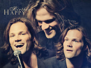 http://img25.imagevenue.com/loc213/th_983147150_Happy_Birthday_Jared_Nadin_122_213lo.jpg